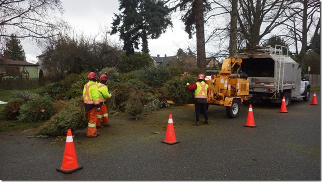 Kiwanis Club of Esquimalt - Tree Chipping